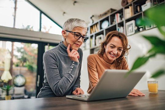 Two casual women looking at laptop indoors, portrait.