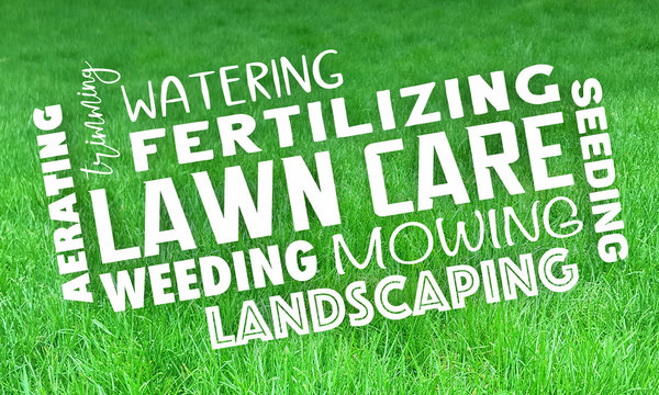 Lawn Care Service Landcaping Mowing Grass Trimming 3d Illustration