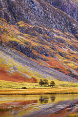 Poster Lavender Autumn landscape in Highlands, Scotland, United Kingdom. Beautiful