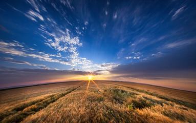 Foto auf AluDibond Blaue Nacht Scenic View Of Landscape Against Sky
