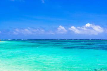 Poster Turquoise 宮古島・わいわいビーチの美しいサンゴ礁の海