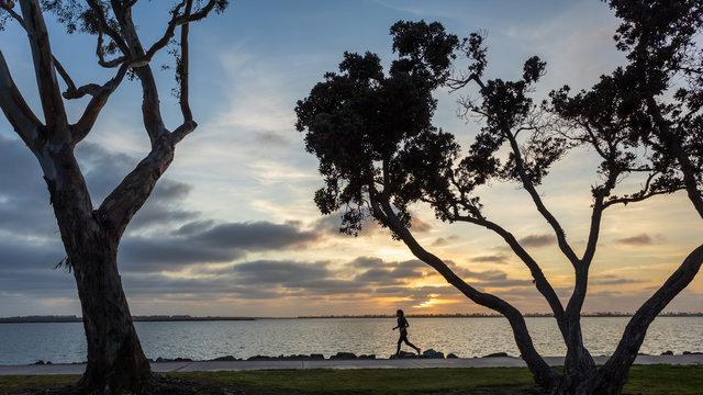 Jogger at sunset