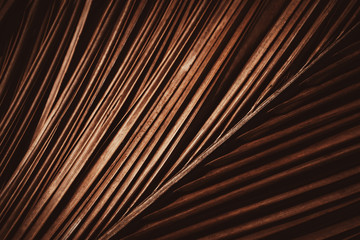 Wall Mural - Palm leaf pattern texture abstract background.