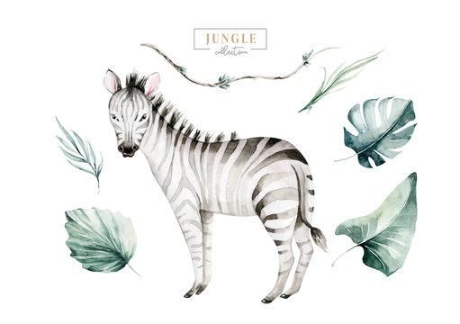 Hand drawn watercolor tropical zebra decoration. Exotic savannah illustrations, zoo jungle tree, brazil trendy art. Perfect for fabric design.