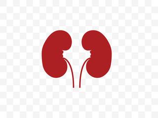 Kidneys, medical, organ icon. Vector illustration, flat design.