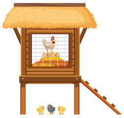 Chicken coop with chickens and eggs inside