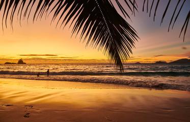 Wall Mural - Beautiful sunset at Seychelles beach
