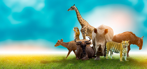 Wildlife Conservation Day Wild animals to the home. Or wildlife protection Wall mural