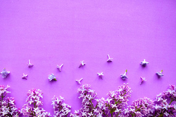 Beautiful blooming branches of lilac flowers on pink background.