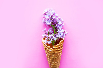 Beautiful lilac flowers in waffle cone. Minimal concept