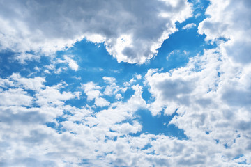 Spring blue sky with clouds and shape of bird