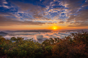 Wall Mural - Beautiful morning mist at sunrise in South Korea.