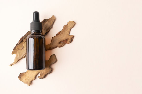 Serum bottle from brown glass with pipette on pine bark on beige background with copy space. Concept bio organic beauty product with natural extract flat lay. Eco cosmetic skincare and body care