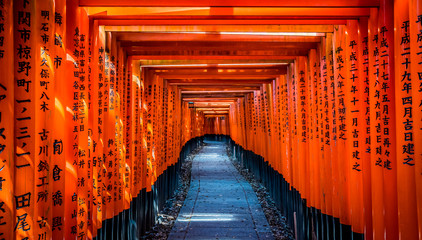 京都 伏見稲荷 鳥居 ~ Fushimi Inari Shrine, thousands of vermilion torii gates, Kyoto, Japan ~