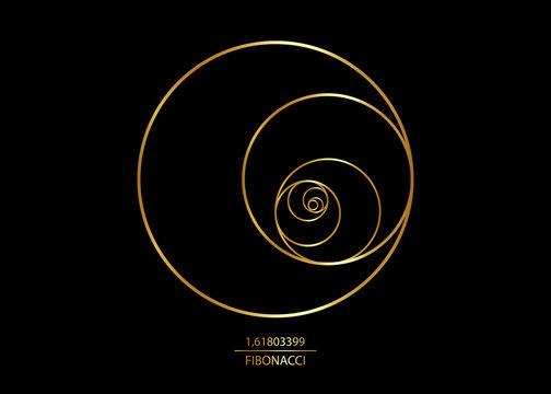 Fibonacci Sequence Circle. Golden ratio. Geometric shapes spiral. Circles in golden proportion. Futuristic minimalist fashion design. Luxury gold Logo. Vector icon isolate on black background