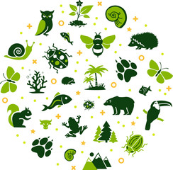 wildlife / biodiversity vector illustration. Concept with icons related to wildlife, animal protection, endangered species, zoology, fauna or ecology.