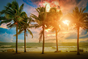 Wall Mural - Silhouette coconut palm trees near the beach at sunset. Vintage tone.