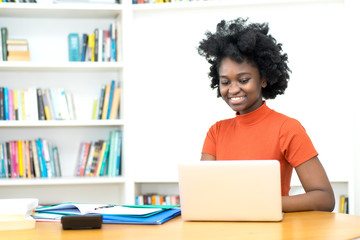 African american young adult woman shopping online at computer