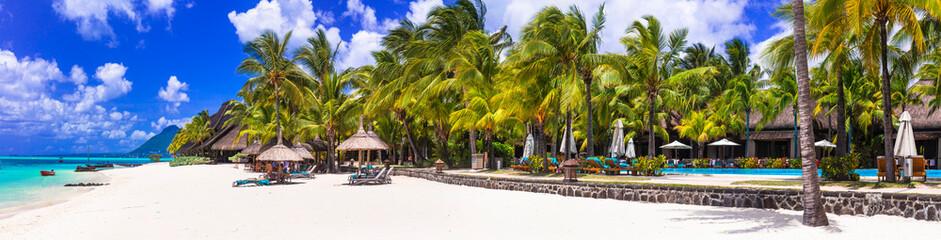 Photo sur Aluminium Palmier stunning tropical beach scenery. Paradise island Mauritius