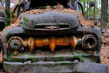 Rusted Out Hulk of Truck