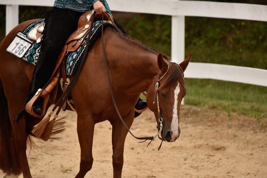 Summer western horse show