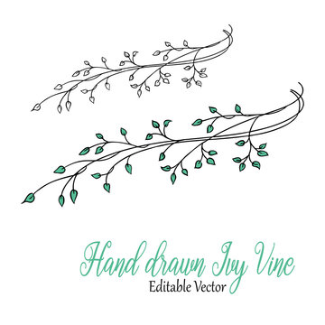 leaves and curls in hand drawn vector design element for borders or corners, chapter or paragraph underline or divider for books or website design, wedding invitations, pretty nature doodle