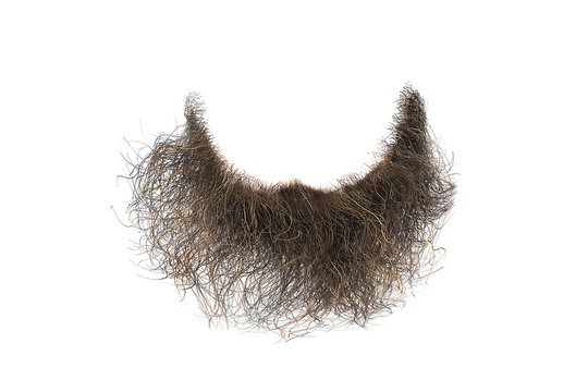Disheveled brown beard isolated on white, close-up. Mens fashion
