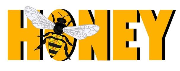 bee sit on word