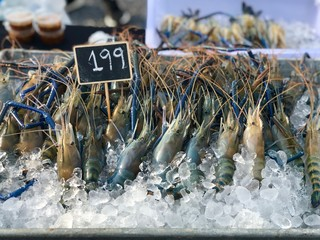 Fresh prawns in the tray with ice and price tag selling at street market