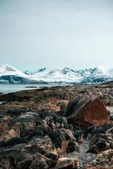 Fototapeta Krajobraz północnej Norwegii, widok na zaśnieżone góry, fiord oraz skaliste wybrzeże