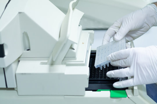 Researcher or scientific introducing a 96 wells plate in quantitative PCR machine/ Thermocycler for DNA or RNA quantification in a biotechnology laboratory