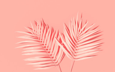 Wall Mural - Exotic plants with backdrop. Tropical layout mockup. Background with painted palm leaves. Pink minimal concept art. 3D Render.