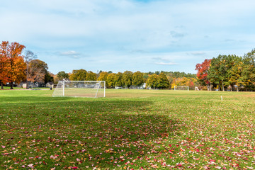Empty football pitch covered in fallen leaves in a public park on a sunny autumn day. Beautiful autumn colours.