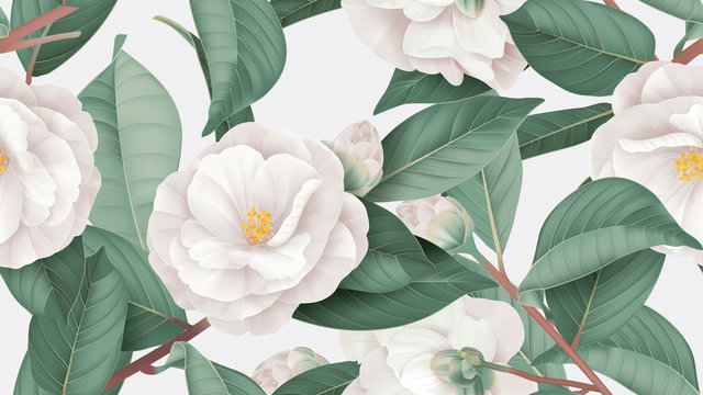 Floral seamless pattern, white Semi-double Camellia flowers with leaves on bright grey