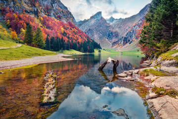Colorful morning view of Seealpsee lake. Magnificent autumn scene of Swiss Alps. Majestic Santis peak reflected in the calm surface of pure water lake, Switzerland, Europe. Fotobehang