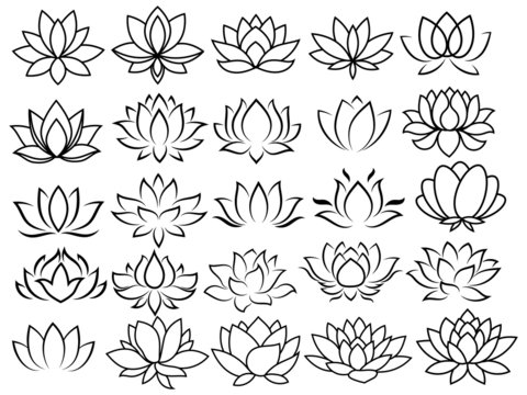 Set of stylized lotus. Collection of lotus flowers for a logo yoga and meditation school. Decorative flower. Black white vector illustration. Tattoo.