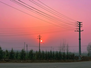Electricity poles and cables against a beautiful pink-purple sunset sky