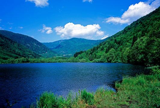 Lac de Sewen dans le parc national du Ballon des vosges au printemps en Alsace en France