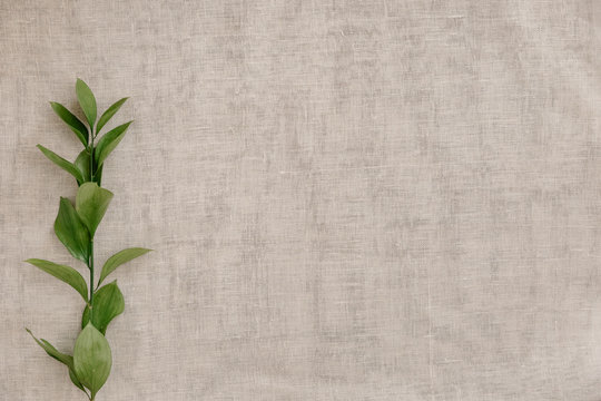Branch with leaves on a background of beige linen fabric, top view, closeup, background, flat lay. Background with copy space for natural and minimal products. Soft and calm concept