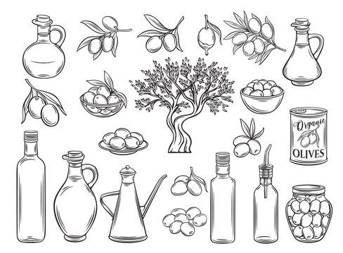 Outline olive oil and olives