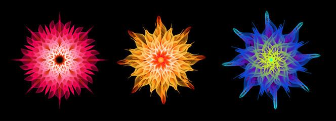 Fototapeta Abstract 3d psychedelic geometric flower set obraz