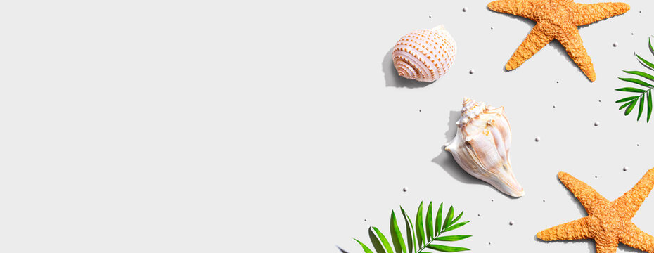 Summer concept with starfish and seashells overhead view - flat lay