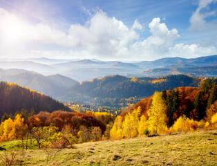 Wall Mural - Fabulous view on the autumn alpine landscape. Location place Carpathian mountains, Ukraine, Europe.