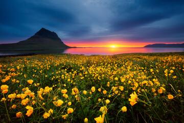 壁紙(ウォールミューラル) - Splendid Iceland landscape with awesome Kirkjufell volcano at sunset. Location place Snaefellsnes peninsula, Iceland, Europe