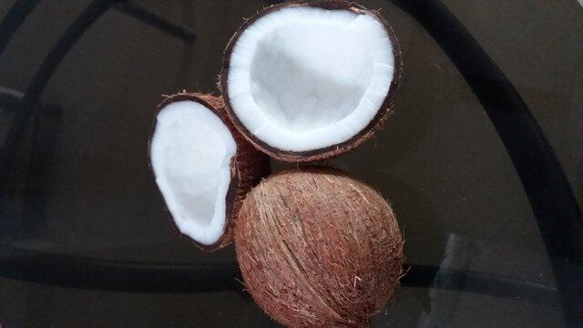 View of entire ripe unhusked Coconut and split coconut (Cocos nucifera) of Arecaceae family.