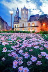 Historic Square of Buenos Aires, at twilight, with pink florwers in the foreground, and Cabildo Building, Parliament and tower at the background.