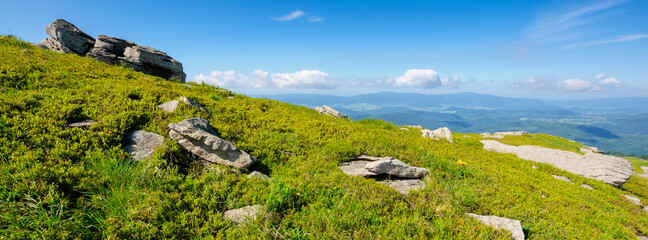 Wall Mural - mountain meadow in summer landscape. blue sky with fluffy clouds. beautiful summer scenery on a sunny day. rocks on the slope among the grass. view in to the distance