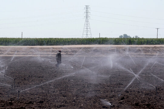 A farmworker works on farmland irrigated by sprinklers as the coronavirus disease (COVID-19) continues to spread in this photo taken in El Centro, California