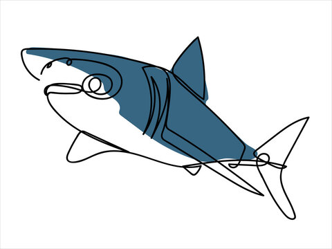 Sea fish in linear style. Shark. Stylized illustration of sea creatures.