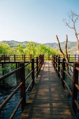 Geumgwang Lake wooden deck walkway at summer in Anseong, Korea